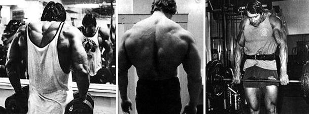 Arnold Schwarzenegger Doing Shrugs