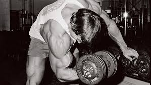 Arnold Schwarzenegger doing dumbbell bicep curls