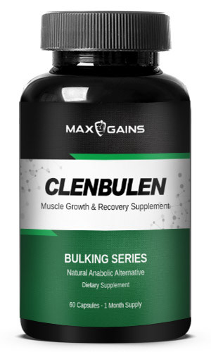 Mxx Gains Clenbulen