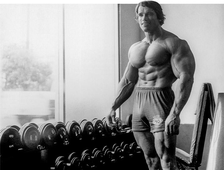 Arnold Schwarzenegger Standing Next To Dumbbell Rack