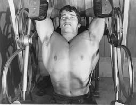 Arnold performing pullovers with nautilus machine
