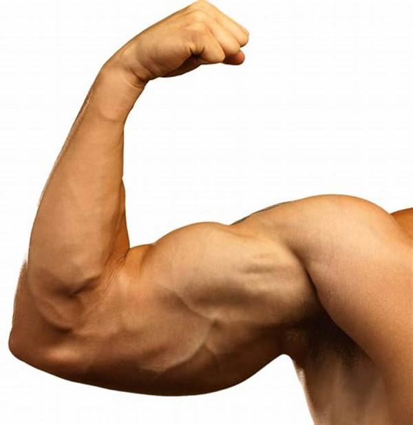 Flexing Arm Bicep