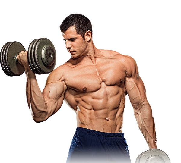 Prbodybuilder curling dumbbells