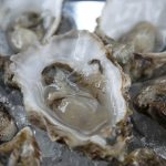 Can Zinc Boost Testosterone