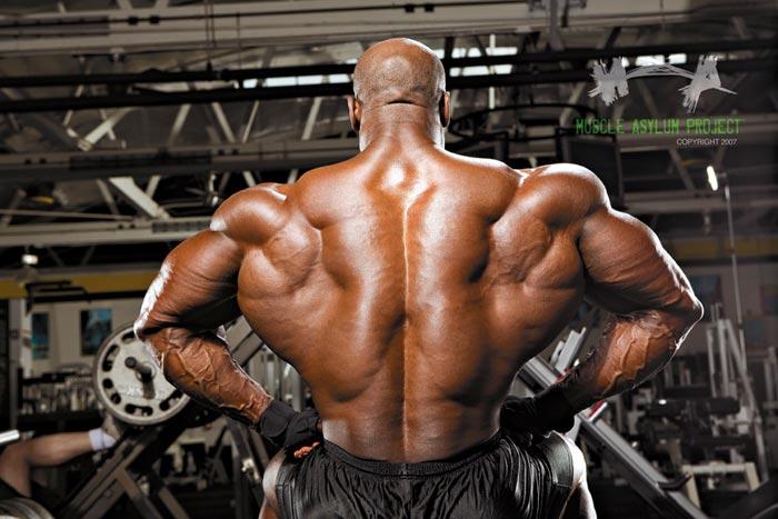 Bodybuilder Flexing Back