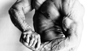 Vascular Bodybuilder